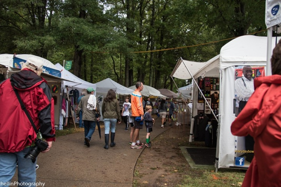Festival in the Park 2015-207