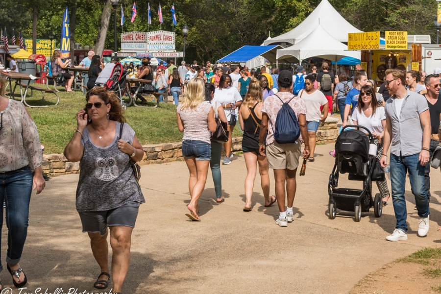 Festival in the Park 2017-257