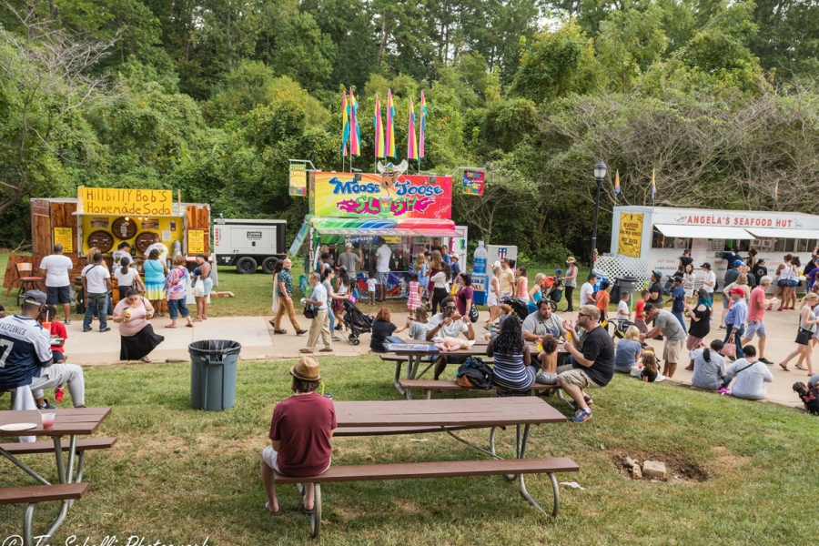 Festival in the Park 2017-439