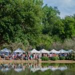 Festival-in-the-park-2014-253