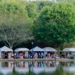 Festival-in-the-park-2014-322