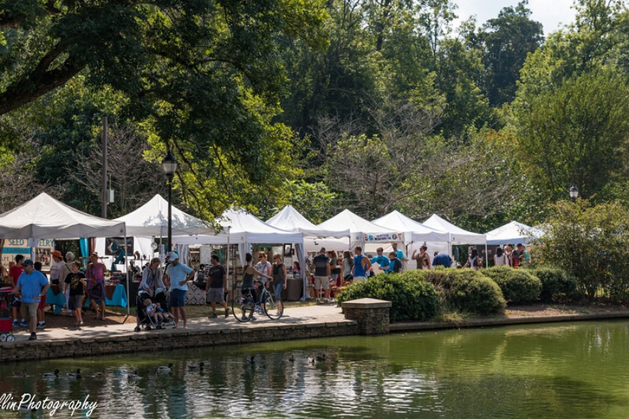 Festival-in-the-Park-2016-26