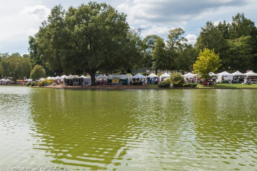 Festival in the Park 2017-116