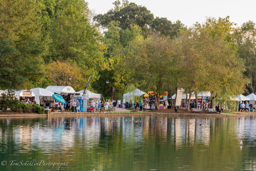 Festaval-in-the-Park-2018-13