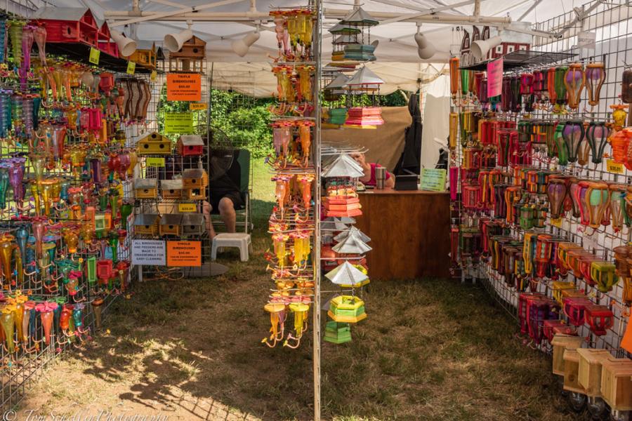 Festival-in-the-Park-2019-253