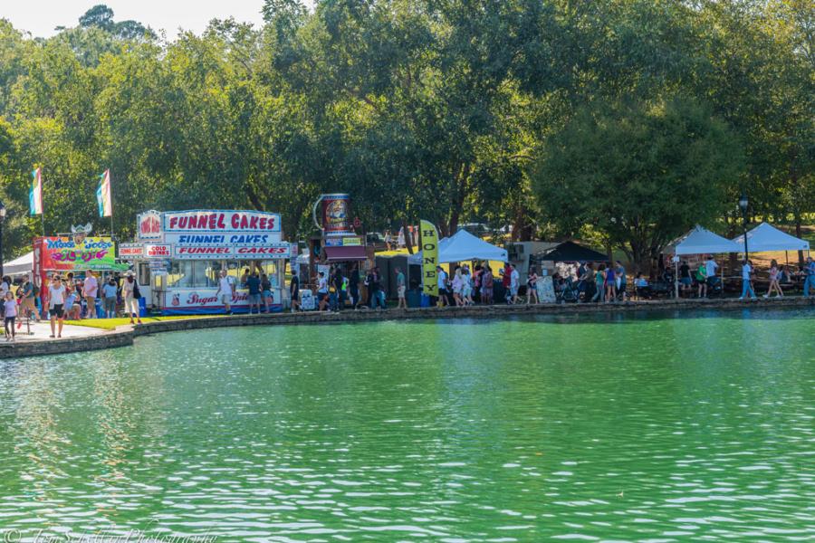 Festival-in-the-Park-2019-280