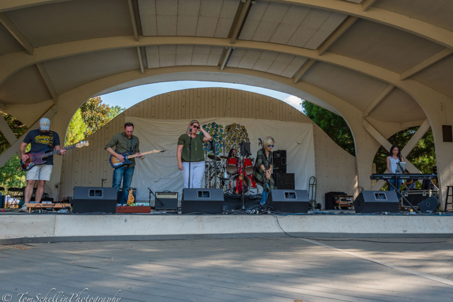 Festival-in-the-Park-2019-80